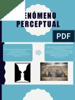 Fenómeno Perceptual