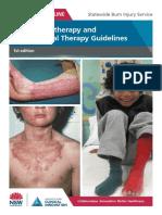 Burns-PT-OT-Guidelines.pdf