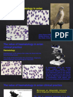 The Value of Haematology in Avian Clinical Practice Master Class Theory