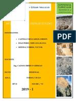 INFORME DE VISITAS CONSTRUCCION FINALI.docx