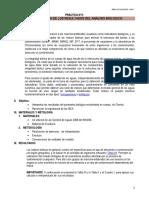 ANALISIS BIOLOGICO-PRACTICA5