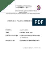 Estructura Informe de Practicas Preprofesionales Sugerencias