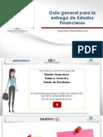 Guia General Para La Entrega de Estados Financieros (5)