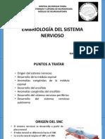 Embriología Del Snc y Snp-convertido