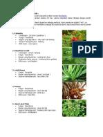 Cara Pembuatan Bio