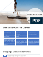 Little Rann of Kutch