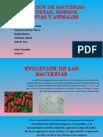 Evolución de las bacterias