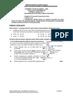 informatica intensiv C++ - Bacalaureat 2009-enunturi