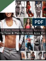 17_Fun__Home_Workout_Circuits_PDF.pdf