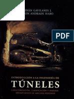 Introduccion a La Ingenieria de Tuneles Hernan Gavilanes j