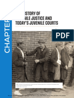 95059 Mallet Juvenile Delinquency Chapter 2