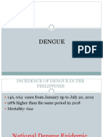 Dengue journal report