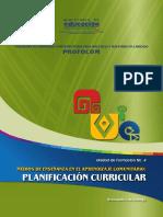 TX_Planificacin_curricular.pdf