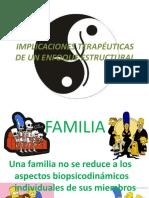IMPLICACIONES TERAPÉUTICAS DE UN ENFOQUE ESTRUCTURAL