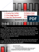 PPT Morbus Hansen Kelompok 10