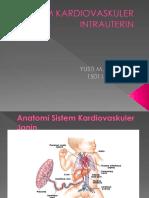 Sistem Kardiovaskuler Intrauterin