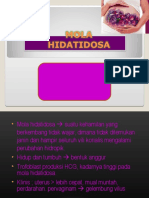 MOLA 2.ppt