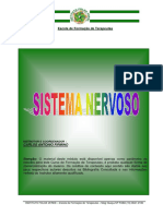 02 - Sistema Nervoso