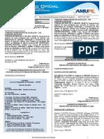 publicado_62530_2019-08-28_853ccce9eccb54f5fbe7b19e0efcf2e7.pdf