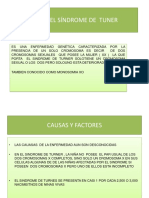 Diapositivas Sindrome de Turner