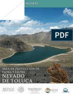 PM Nevado de Toluca