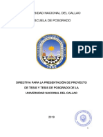 Interner369-19-r Directiva 009 Presentacion Proyecto Tesis (Anexo)