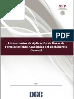 Lineamientos de Aplicacion de Horas de Fortalecimiento Academico 2019