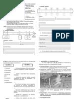 formativa semestral 1