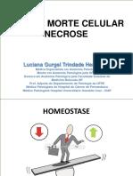 Lesão e Morte Celular Necrose