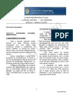 6. MÓDULO I – BRASIL COLÔNIA_ Economia mineradora.pdf