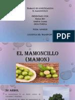 EL MAMONCILLO FICHA 1694530.pptx