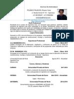 c v - Polanco Palacios Victor