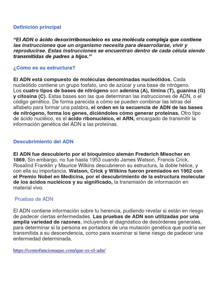 El Adn Docx Dna Nucleic Acids