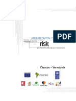 CARACAS CAPITAL.pdf
