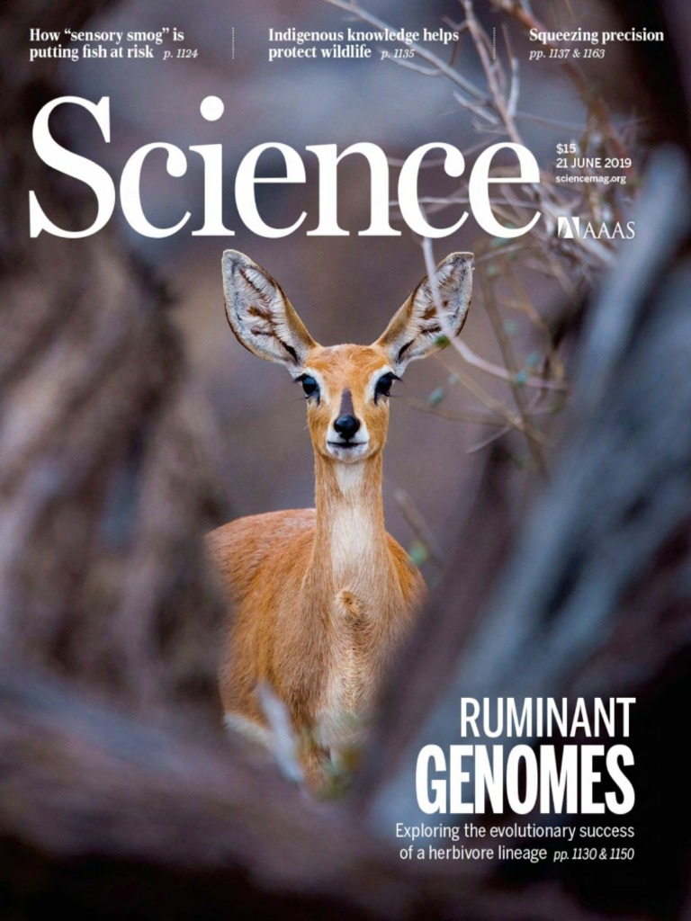 Animal Crossing White Wolf Porn science | microbiota | earth & life sciences