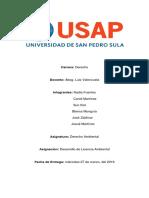 Licencia Ambiental, D.A