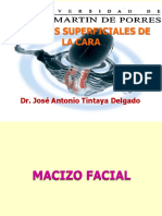 Clase 10-Reg Superficiales y Profundas de La Cara-JATD