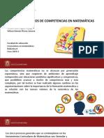 ESTANDARES BASICOS DE COMPETENCIAS EN MATEMATICAS.pptx