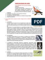 ESPECIALIDAD DE AVES.docx
