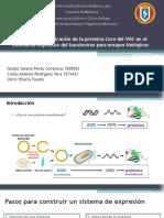 Seminario de Biologia Molecular Proteína Core con Baculovirus