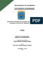 TESIS DE CAJAMARCA