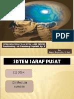 2. SSP Dan SST - Anggy Rayendra