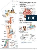 [ENT]1b02 - Anatomy and Physiology of the Nose and Paranasal Sinuses