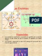 Las Enzimas y Su Cinetica Power Point