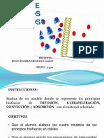 #28-PRINCIPIOS BIOFISICOS.pptx