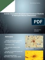 neurobiology seminae