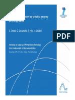 WS_Palo1_nov2014.pdf
