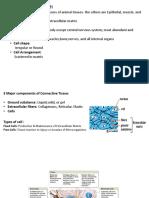 Connective Tissue.docx