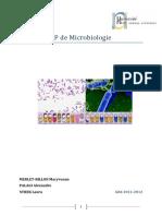 Microbiologie_2011.pdf