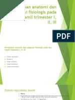 Perubahan anatomi dan adaptasi fisiologis pada ibu hamil.pptx